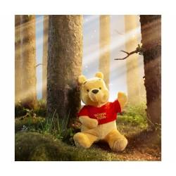 Peluche Winnie the Pooh ilustración